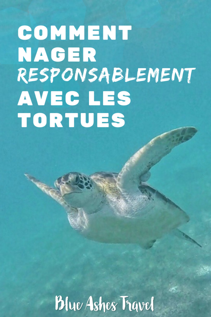 Pin Nager responsablement avec les tortues