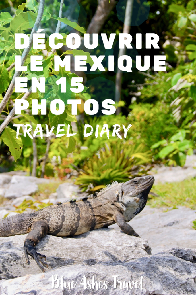 Pin Travel Diary Mexique